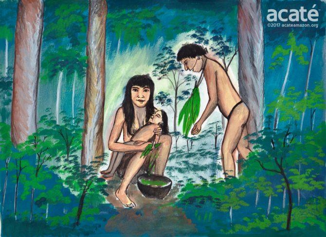 Mother_Bathing_Child-001-2wmright2-670x487--Traditional healing in the rainforest, rendering by Matsés indigenous artist Guillermo Nëcca Pëmen Mënquë©Acaté